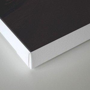 SOHN Canvas Print