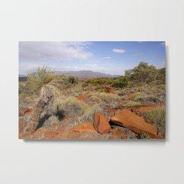 Flinders Ranges Desert landscape Metal Print
