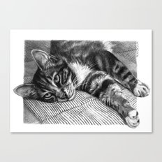 Resting Kitty G064 Canvas Print