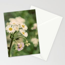 Wildflower Stationery Cards