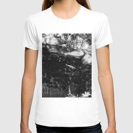 Reflecting Pond (Black & White) T-shirt
