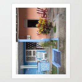 Porches Art Print