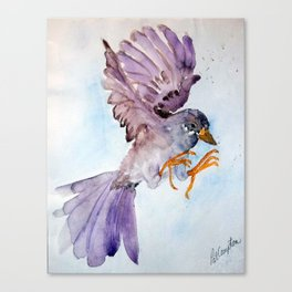 Lavender Bird Canvas Print