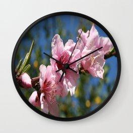 Close Up Peach Tree Blossom Against Blue Sky Wall Clock