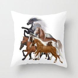 Broncos Throw Pillow