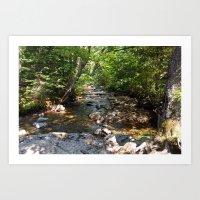 Down River Art Print