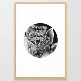 Bats II Framed Art Print