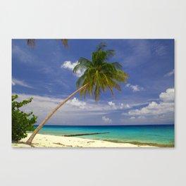 Tropical Palm Tree White Sandy Beach Canvas Print
