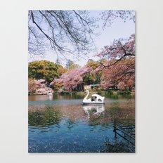 Sakura @ Kichijoji Canvas Print
