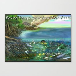 Save the Mangroves! Canvas Print
