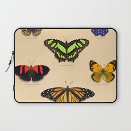 Butterfly Collection Laptop Sleeve