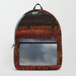 The Red Field Backpack