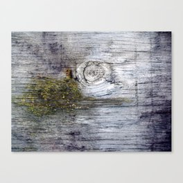 Eye of the Barn Canvas Print