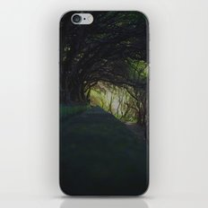 levada III. iPhone & iPod Skin