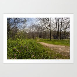 Troubled summer woods Art Print