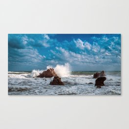 rough day Canvas Print