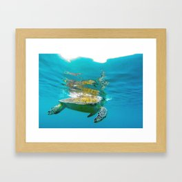 Sea Turtle Swim Framed Art Print