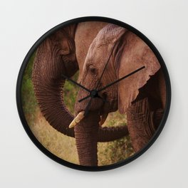 Mom and Baby Elephants Wall Clock