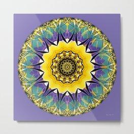 Mandalas of Healing and Awakening 5 Metal Print