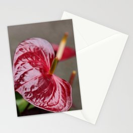 glossy laceleaf Stationery Cards
