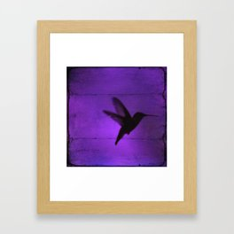Razzleberry Hummingbird by CheyAnne Sexton Framed Art Print