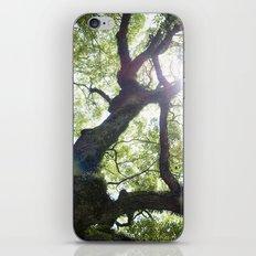 Earth beat iPhone & iPod Skin