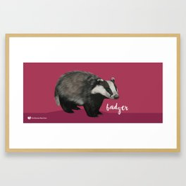 European Badger Framed Art Print