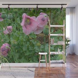 Poppies in rain Wall Mural