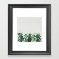 Pineapple Leaves Framed Art Print