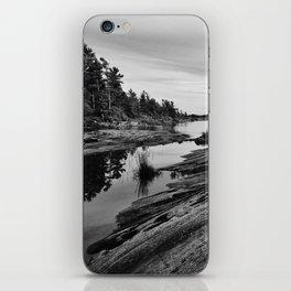 The Massasauga Park iPhone Skin