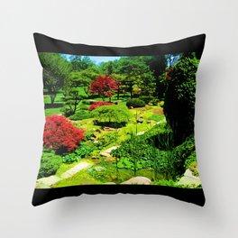 Colour Throw Pillow