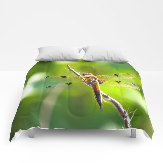 Dragonfly On A Branch Of A Rose Comforters