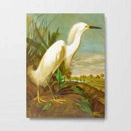 Snowy Heron, or White Egret Metal Print