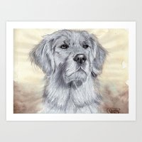 golden retriever Art Prints featuring Golden Retriever by Cindy-R