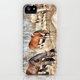 Apache Creek Ponies iPhone Case