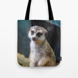 Huh? What'd you Say?? Tote Bag