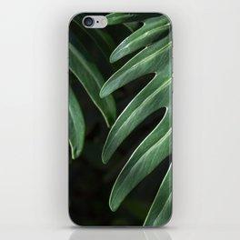 Tropical Leaves on Black iPhone Skin