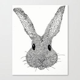 Musical Bunny Canvas Print