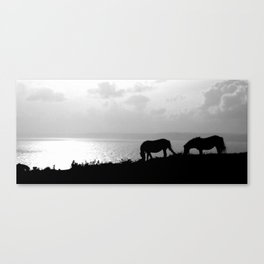 Overlooking the bay. Canvas Print