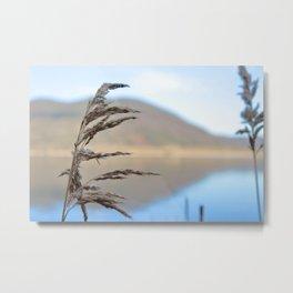 lake and flora Metal Print