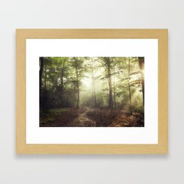 german rain forest Framed Art Print