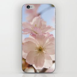 Sping blossom iPhone Skin