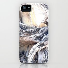 Gnarly iPhone Case