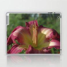 Sunrise in a flower - Hemerocallis White Eyes Pink Dragon Daylily Laptop & iPad Skin