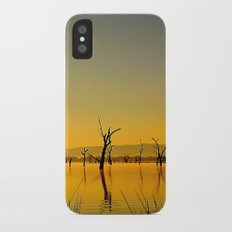 Scupltures in the Lake iPhone X Slim Case