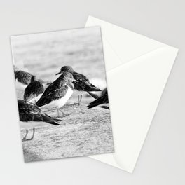 Birds and People relaxing at the beach Stationery Cards