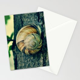 OOLIQUE Stationery Cards