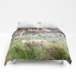 Lamb in Flea Bay. New Zealand Comforters