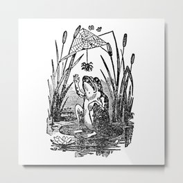 Frog and Spider Metal Print