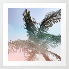 sunny palm life - Orange County, CA Art Print